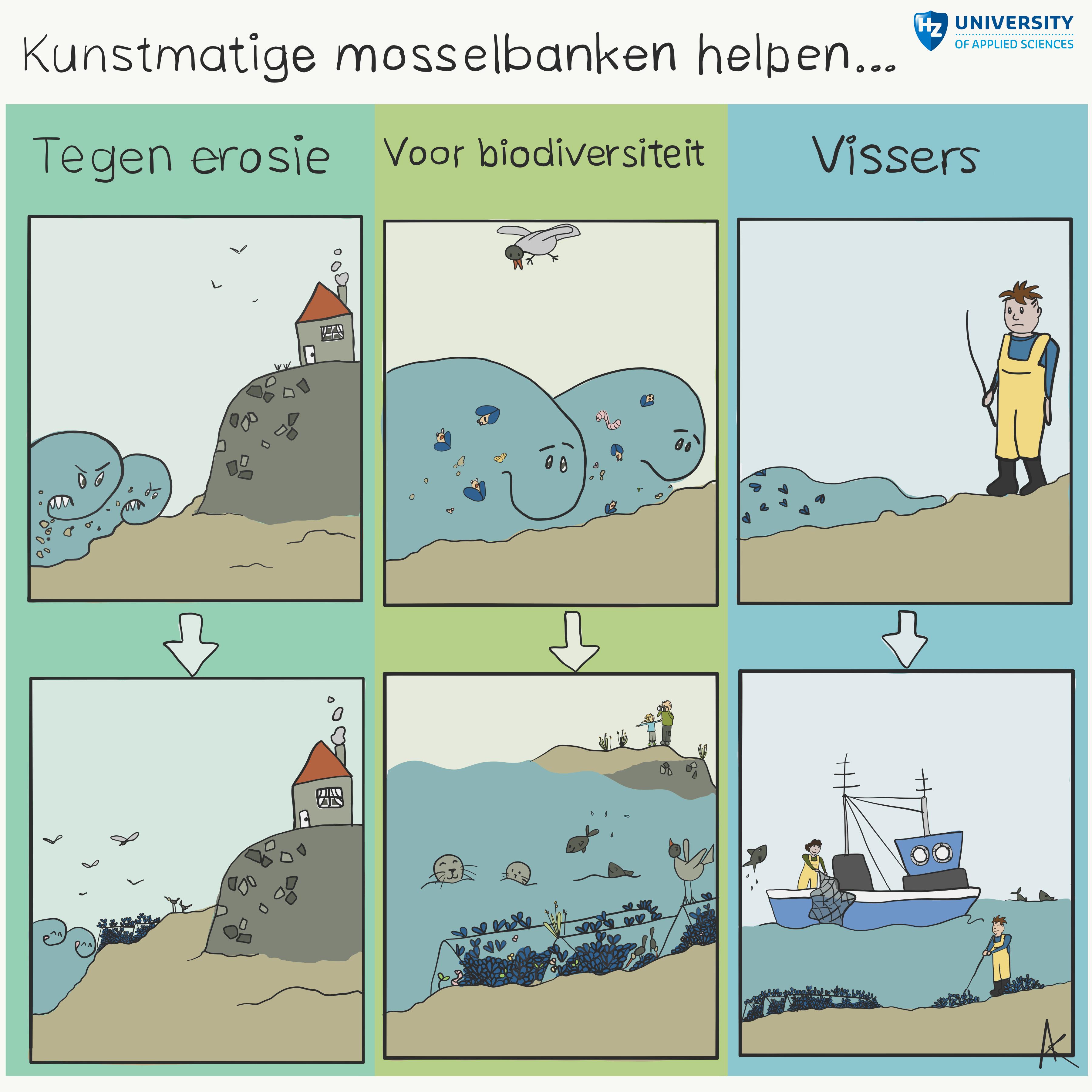Large_infographic_MeerwaardeMossel